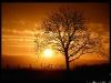 Coucher de soleil hivernal en décembre.