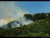 Incendie à Thann 17 06 2014.