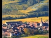 Paysage Automnal autour de Sigolsheim.
